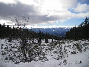 Mount Shasta.24