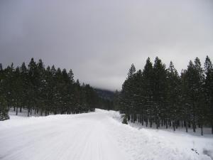 Mount Shasta.25