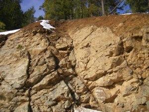 Mount Shasta.27