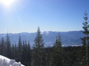 Mount Shasta.33