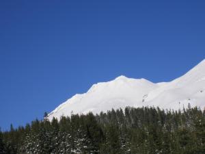 Mount Shasta.34