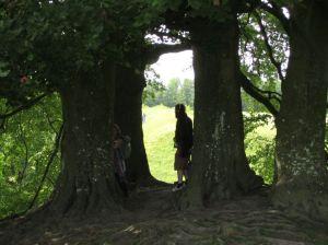 Avebury.Fairy Tree.June 18