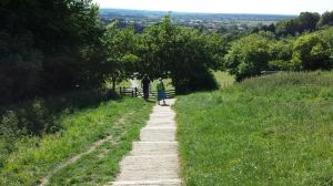 Pathway to the Tor stairway.June 15