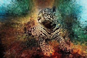 jaguarsun