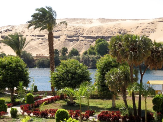 aswan_botanical_garden_09