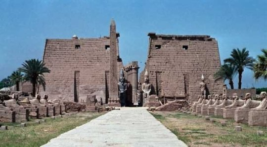 sphin-lined-and-the-pylon-of-ramesses-ii-at-the-entrance-of-the-luxor-temple