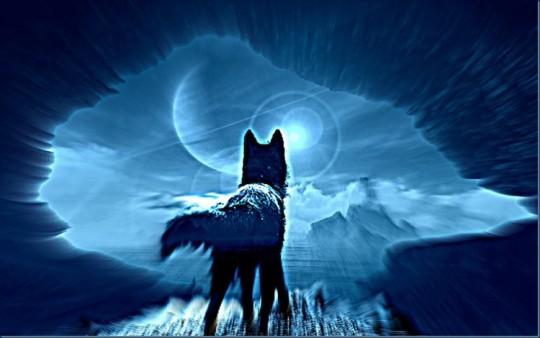 ice-wolf