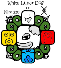 white-lunar-dog