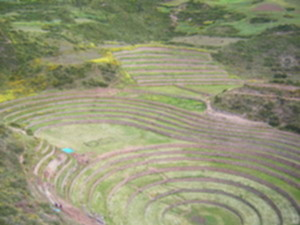 Moray.seen from above