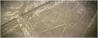 Nazca Line.2