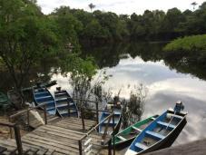 amazonia-expeditions.1