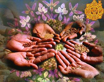Yellow Crystal Seed.1