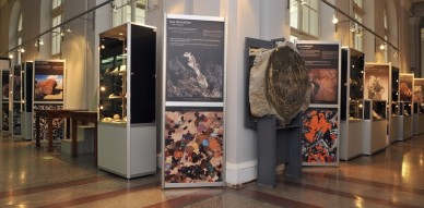 Slovenian Museum of Natural History.Ljubljana.stones and crystals