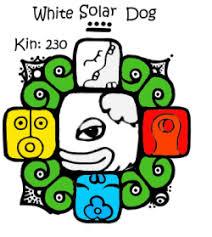 White Solar Dog