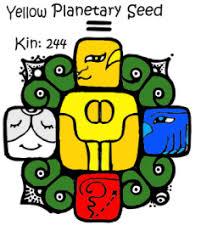 Yellow Planetary Seed
